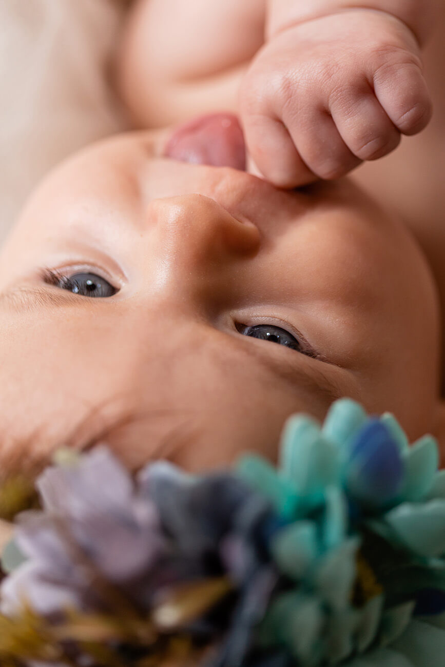 photo-naissance-muret